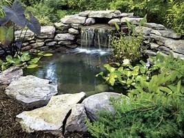 Ландшафтный дизайн с водоёмом